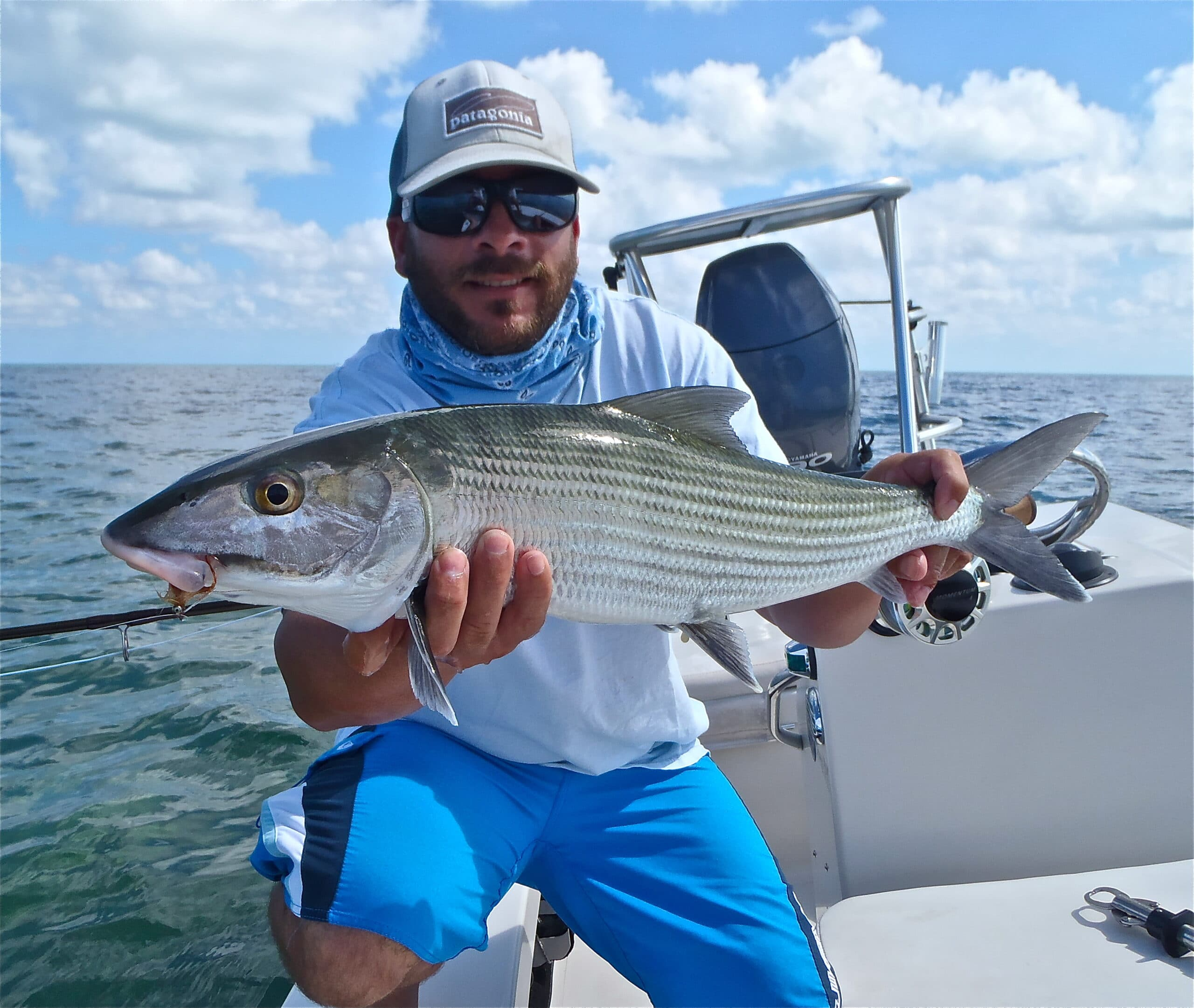 Fly fishing bonefish biscayne bay and florida keys with for Fly fishing miami