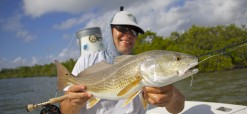 Everglades Redfish On Fly