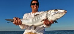 Big Miami Bonefish