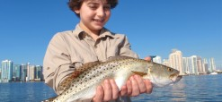 Seatrout caught on Biscayne Bay