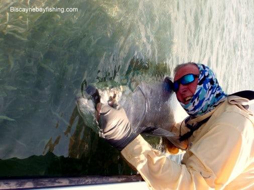 Tarpon Fishing 2010