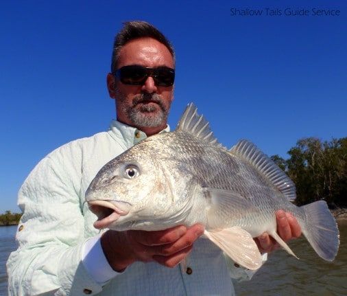 Flamingo Black Drum