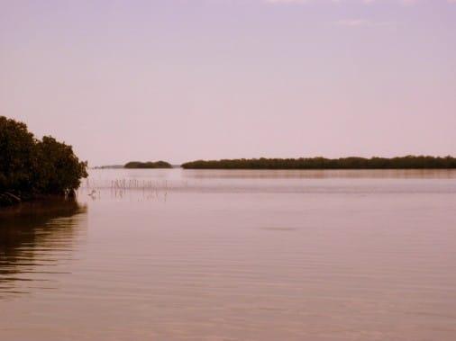 Florida Bay Redfish Flat
