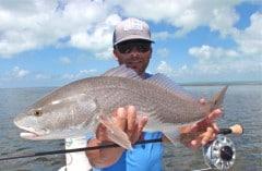 Fly Fishing For Redfish Islamorada, FLorida