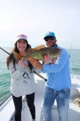 grouper caught while fishing the flats