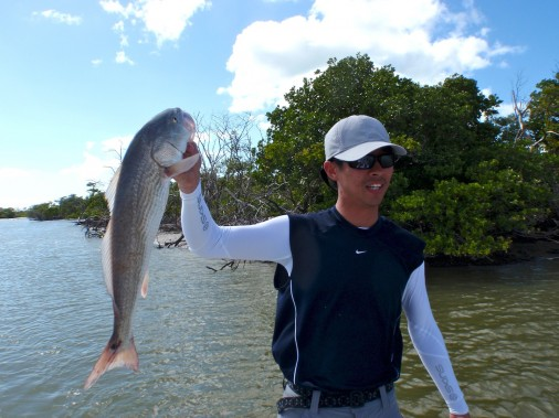 Florida Everglades Redfish Flamingo Marina