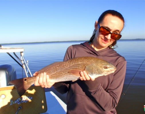 Flamingo FloridaEverglades Redfish
