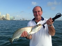 happy customer with sea trout in biscayne bay