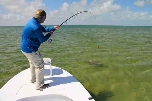 Miami Flats Fishing For Sharks