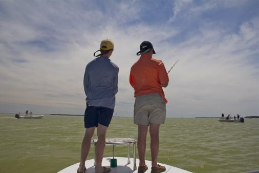 Black Drum Fishing Flamingo Everglades