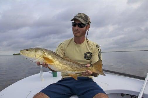 Flamingo Everglades Redfish