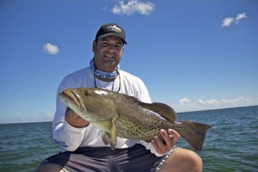 Biscayne Bay Grouper