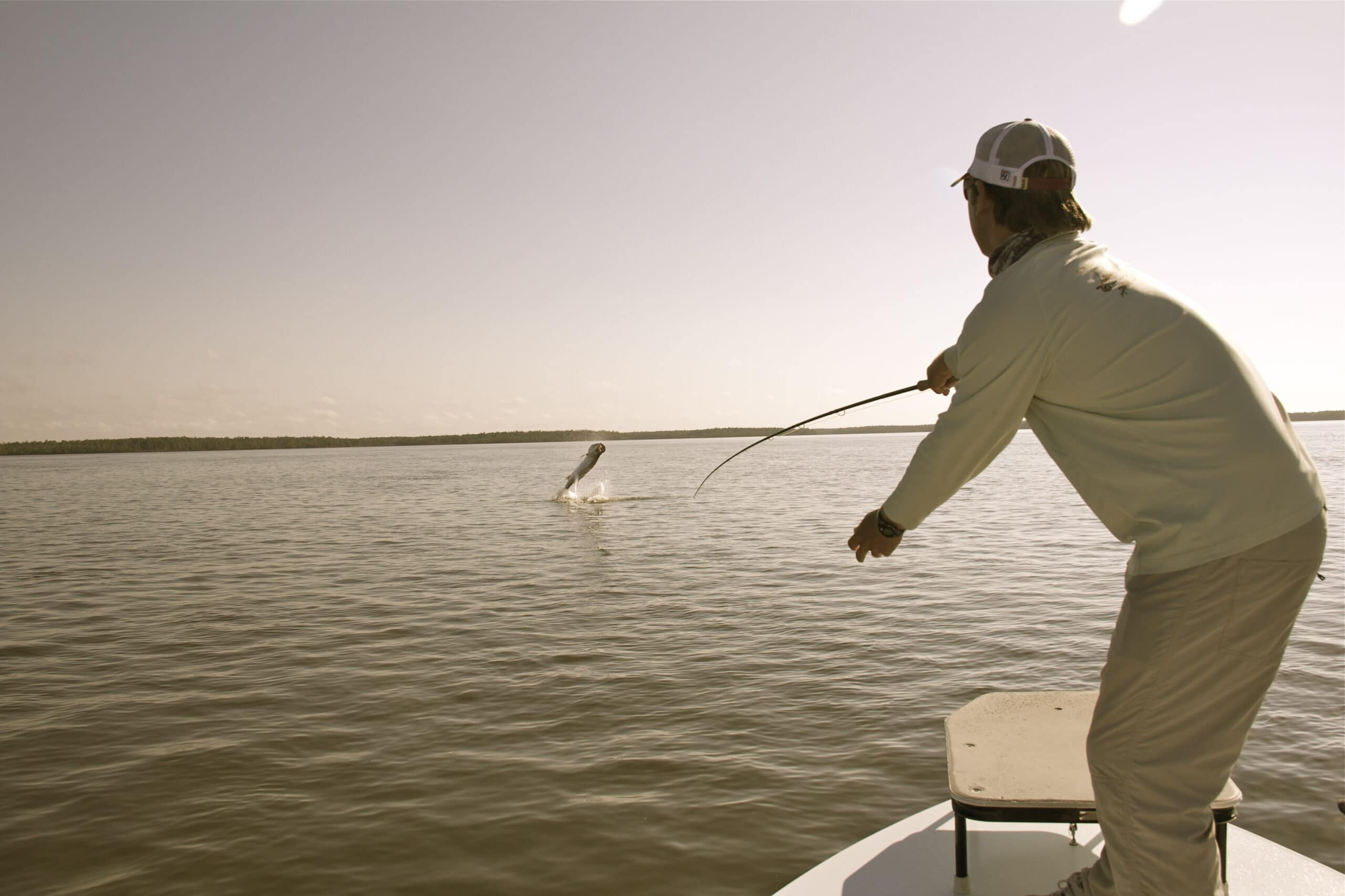 Tarpon Fishing In The Winter|Miami and Everglades National Park