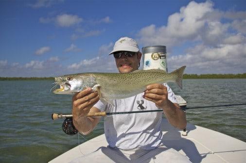 Florida Bay Trout