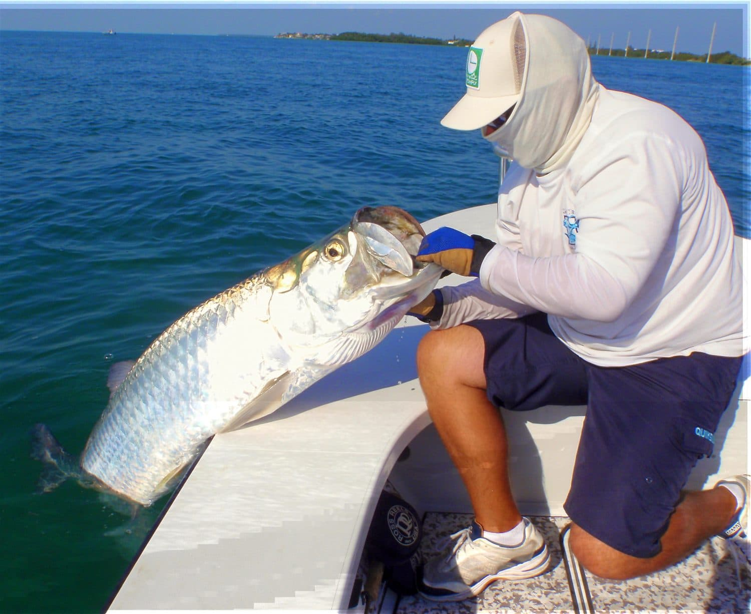 Miami Tarpon Fishing Guide