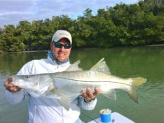 Everglades Snook Fishing Charter