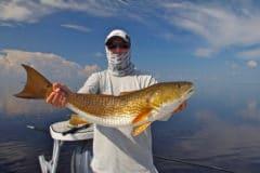 Redfish caught in Flamingo Everglades National Park