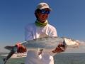 12 pound Bonefish on fly