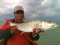 Bone fishing in Biscayne Bay
