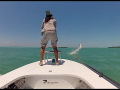 Big Backcountry Tarpon