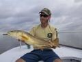 Flats fishing redfish